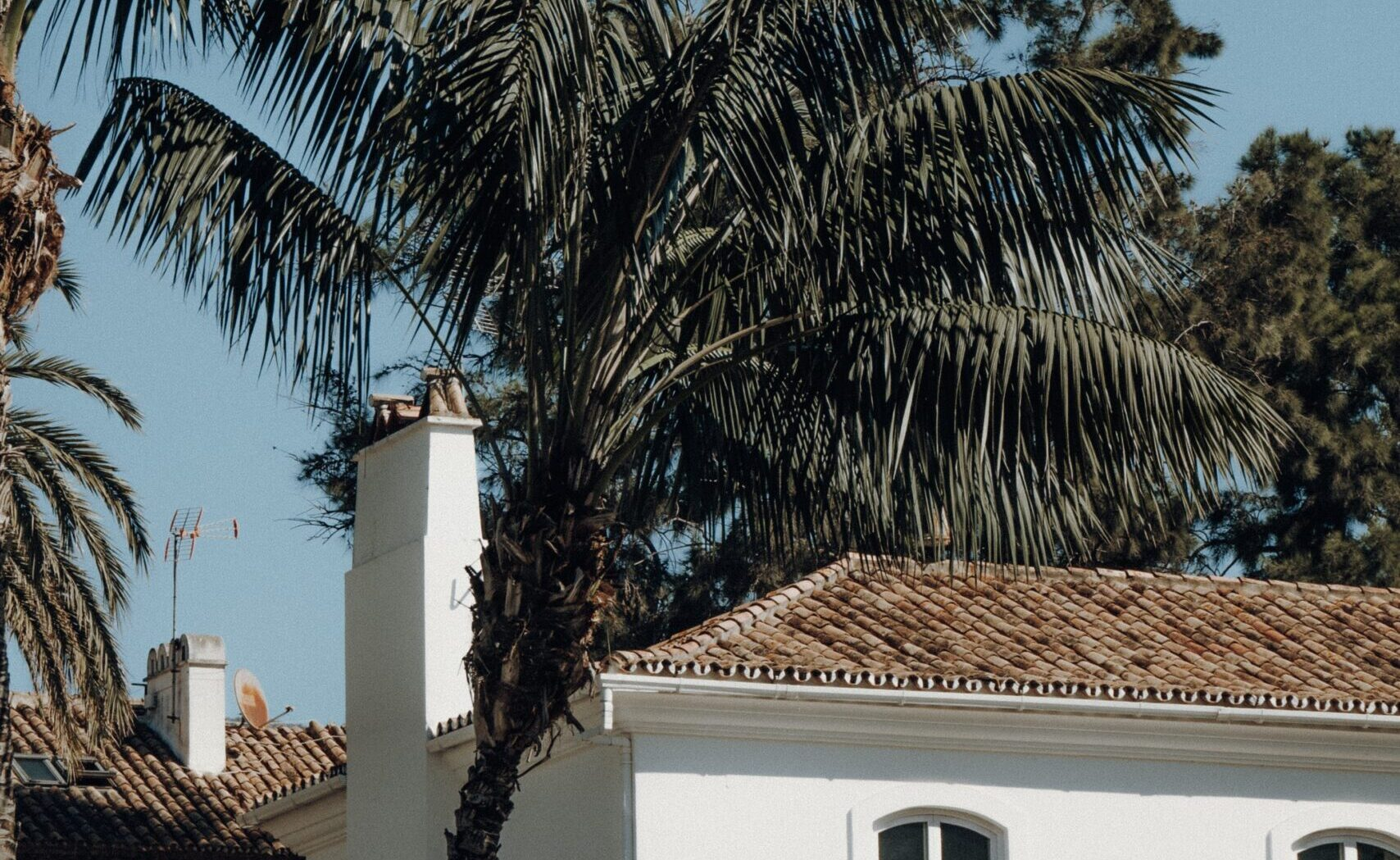 Costa del Sol: the new hotspot for working from home